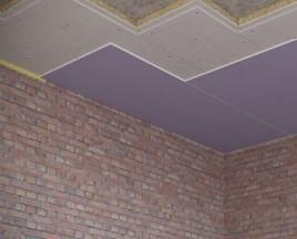 ЗИПС-Модуль -потолок2